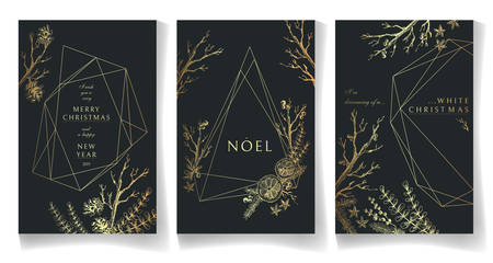 Set of golden winter cards, geometric trendy crystal design. Hand drawn sketchy graphics, branches, pine-tree, citrus, spices. Terrariums.