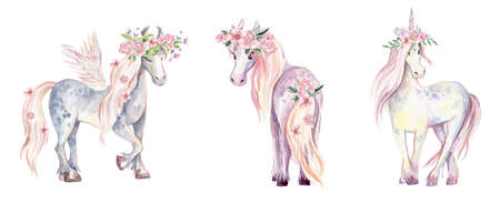 Magic Unicorn, Pegasus and Pony. Watercolor illustration, beauti Reklamní fotografie