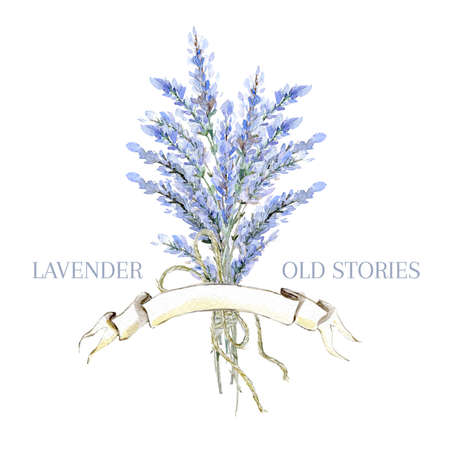 Watercolor hand drawn lavender logo. Provence  bouquet with lavender. Natural retro product emblem. Stock Photo