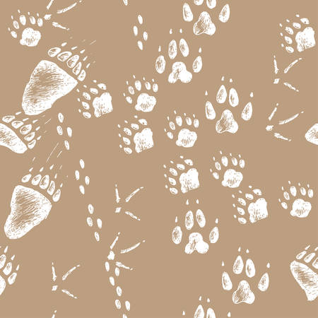 Vector hand drawn seamless pattern with walking wild wood animal and bird tracks. Sketchy style