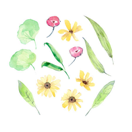 Watercolor collection of flowers and leaves. Light green Banco de Imagens