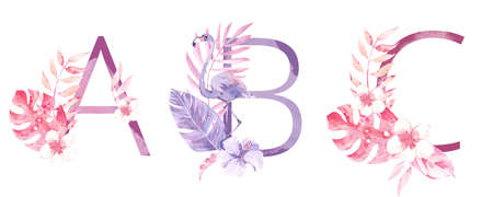 Watercolor Hand Drawn tropic letters. Uppercase A, B, C, with jungle herbal decorations. Palm and monstera leaves, flowers and flamingo Stok Fotoğraf
