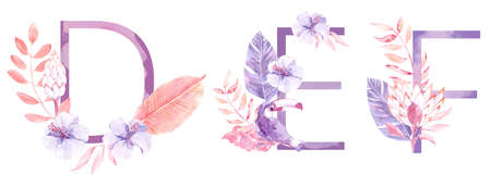 Watercolor Hand Drawn tropic letters. Uppercase D, E, F with jungle herbal decorations. Palm and monstera leaves, flowers and toucan