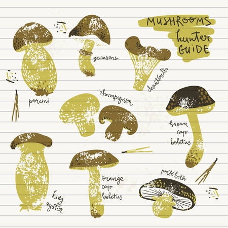 Edible Mushrooms guide poster. Linocut old style. Hand drawn vector illustration. Natural colors. 일러스트