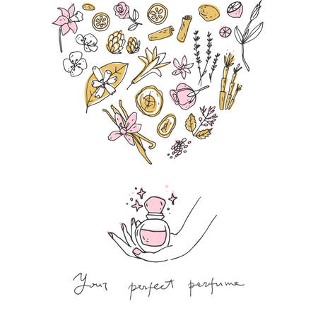Perfume recipe, bottle and ingredients. Doodle vector illustration.