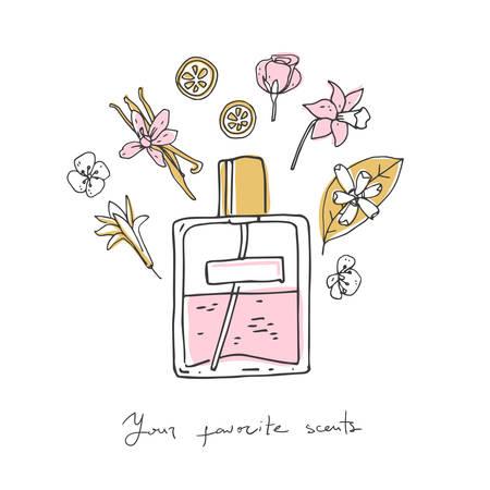 Perfume recipe, bottle and ingredients. Doodle vector illustration Illustration