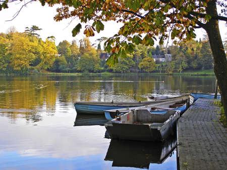 Boats and birds on an Irish lake on an autumn morning  Stock Photo