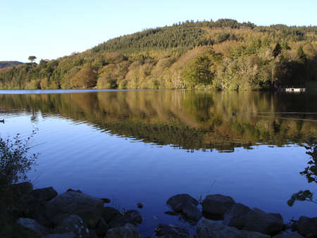 Lake and forest at Castlewellan, Co. Down, Ireland