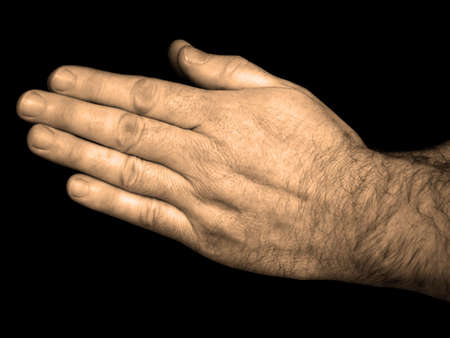 Hands In Prayer - Sepia Toned                            photo