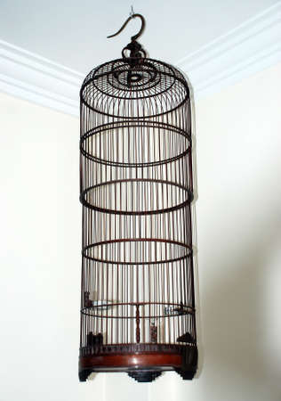 beautiful birds cage  image in the house area