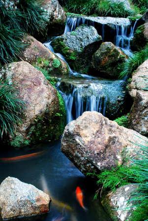 beautiful focus a waterfalls Stock Photo