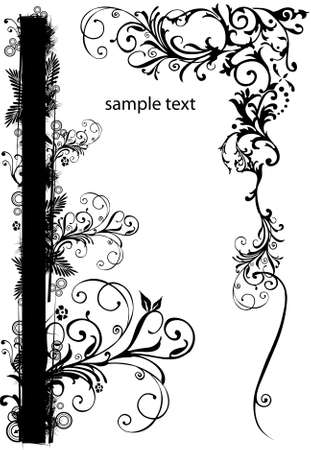bordure floral: fronti�re floral Banque d'images