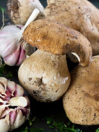 wilding: Delicious boletus edulis mushrooms with garlic Stock Photo