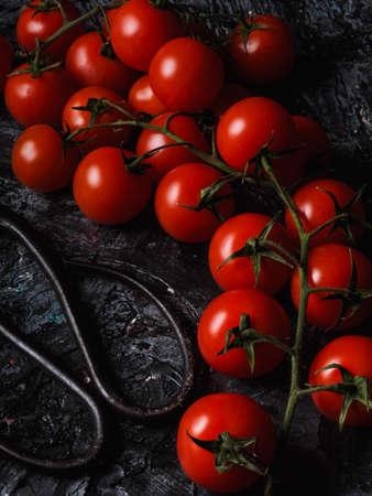 A Still life on black background of little tomatoes - Sicily - Pachino