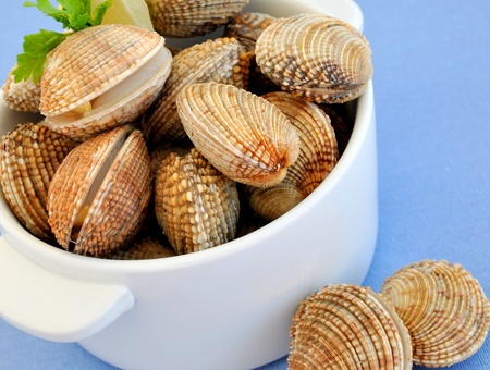 cockles: Fresh raw cockles clams