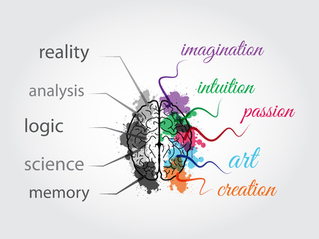 Brains Illustration, vector file, presents the functions of left and right sides, which the left side contains reality, analysis, logic, science and memory, for the right side contains imagination, intuition, passion, art and creation. Illustration