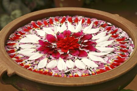 Flower petals decoration floating on water in earthen pot