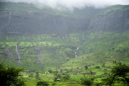 Landscape,low monsoon clouds on green fields,Nasik,Maharashtra,India