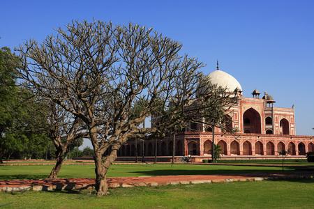 Tree Champa and Magnolia Grandiflora in Humayuns tomb built in 1570,Delhi,India UNESCO World Heritage Site Stock Photo