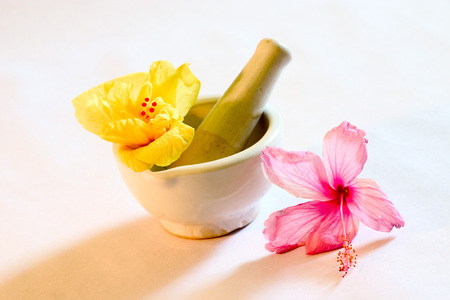 Manual grinder and shoe flower Hibiscus color  red,yellow,pink and white used for Ayurvedic and Herbal medicine,India Stock Photo