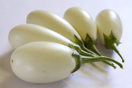 Vegetable,white,Brinjal,Baingan,Aubergines,eggplant,India Stock Photo