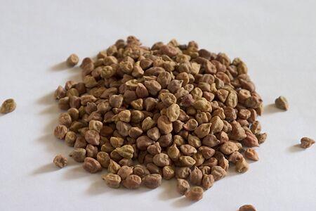 Peas,Kala Channa,Black Chickpeas,Cicer arietinum,India