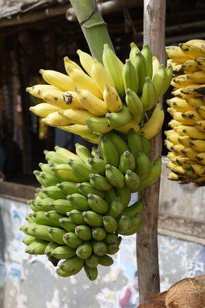 Fruits Stall,Karnataka,India