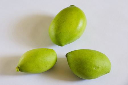 Fruit,green mangoes,mangifera indicia,India