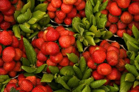 Indian fruits,Red strawberries specially available in Mahabaleshwar,Maharashtra,India