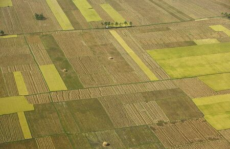 Aerial view of tilled field,Andhra Pradesh,India Stok Fotoğraf