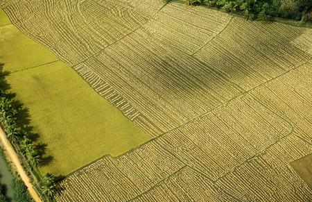 Aerial view of tilled field,Andhra Pradesh,India Stok Fotoğraf - 85742579