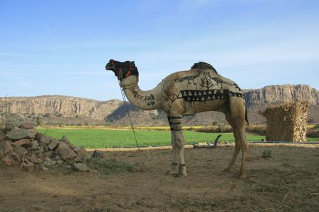 ラクダ、ランタン ボール国立公園、ラジャスタン、インドを描いた