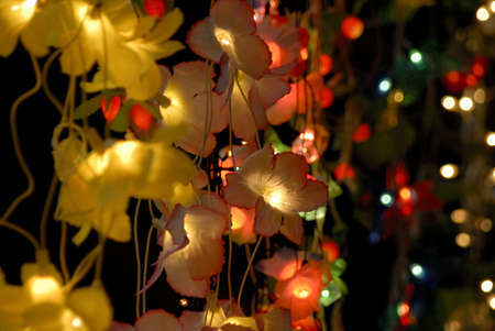 toran: Lamps and lighting for sale on time of Indian festival Diwali deepawali LANG_EVOIMAGES