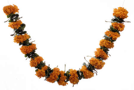 toran: Marigold and Mango leaves garland for prayer on Indian Dussera dusera Festival