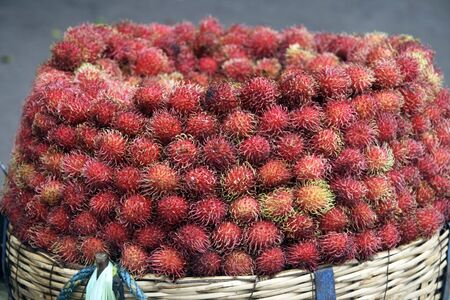 Rambuthan fruit reported to be collected from forest