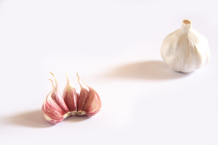 Indian spice,Garlic bulbs and cloves Lahsun Allium sativum on white background