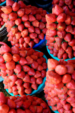 Fruit,Strawberries fragaria ananassa for sale in blue basket