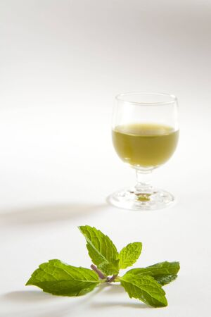 Green spices mint juice against white background,pudina ka rus,India