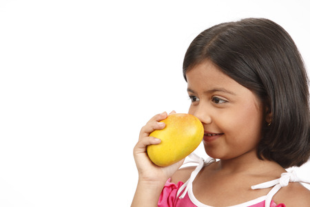 Eight year old girl holding ripe yellow alphonso mango in her hand and smelling