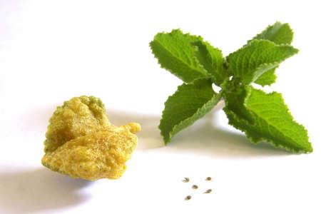 Indian cuisine,fast food starters Ajwain Ke Patte Ka Pakoda crispy Ajowan leaf Puffs Carum ajowan served on white background