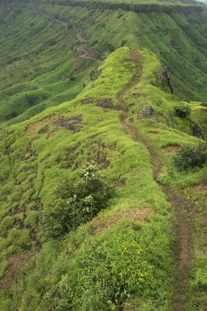 gad: Walking path and motor able road winding in green landscape of western ghats near Sajjan Gad,Satara,Maharashtra,India LANG_EVOIMAGES