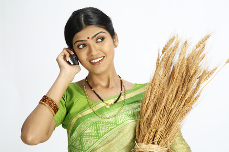 Rich Indian farmer wife holding harvested golden wheat crops and talking on mobile