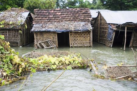 Flood of Bihar 2008 water of Kosi river in Purniya district,Bihar,India Stok Fotoğraf
