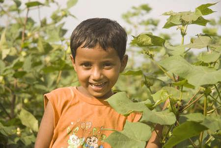 Cheerful farmer girl in cotton field,village Vaitagvadi,Parbhani,Marathwada,Maharashtra,India