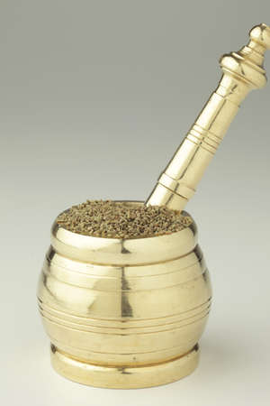 Spices,bishop weed ajowan ajwain trachysrermum ammi carum ajowan carum copticum in metallic mortar and pestle on white background Stock Photo