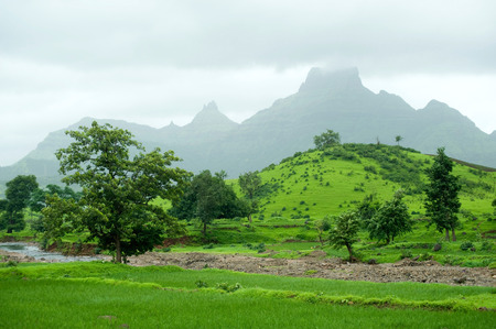 Landscape in monsoon and mountain chanderi at Panvel,district Raigadh,Maharashtra,India