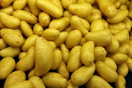 Vegetables of Potatoes India Stock fotó