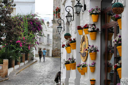 pictoresque: RATE  SPAIN - 7 OCTOBER 2016: Pictoresque houses with flowers in Tarifa old town Editorial