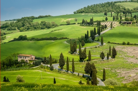 Road with curves and cypresses in Tuscany, Italy photo