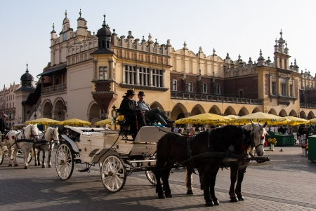 Krakow, Poland - October 27, 2006: Traditional carriage and horses wait for tourists in front of the Cloth Hall.  Stock Photo - 17298374